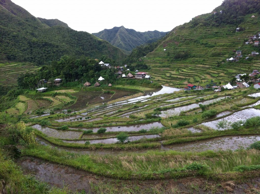 rice field banaue and batas philippines