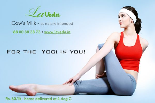 Laveda cow milk noida Delhi Gurgaon Yoga